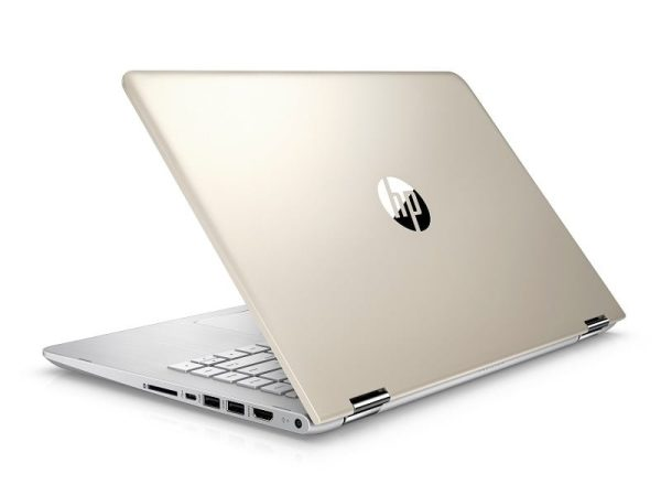 HP BS Series Gold